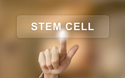 What is Considered a Stem Cell?